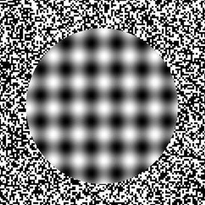 brain_f26f24_1743446