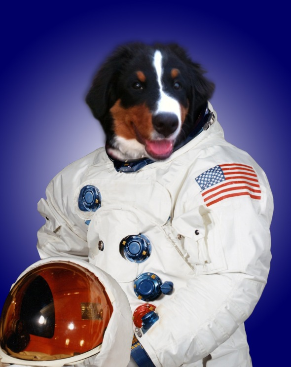 astronaut_blue_dog_freeman
